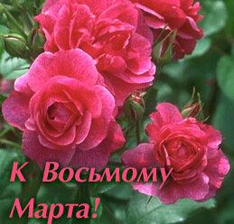 Цветы к 8 Марта открытка поздравление картинка