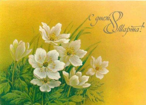 8 Марта! Нежные первоцветы открытка поздравление картинка