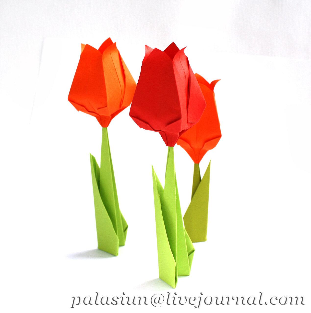 Фото тюльпанов из бумаги схемы