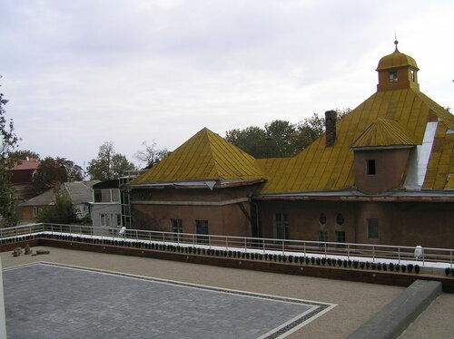 Вид из окна офиса на крышу с посаженными на ней маленькими декоративными растениями. Одесса.