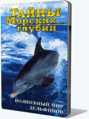 Волшебный мир дельфинов