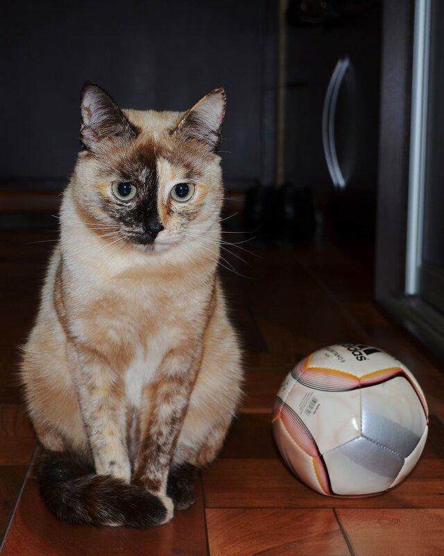 Маруся и мяч