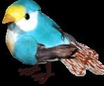 ditab bird2.png