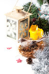 Christmas card with bird in nest