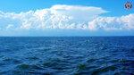 море (1).jpg