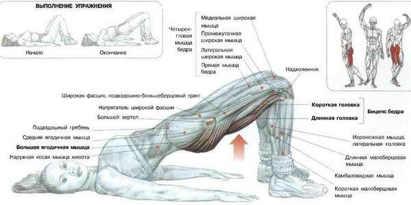 Упражнения для похудения ног подборка комплексов фото
