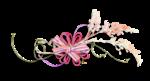Palvinka_FlowerEssence_cluster (16).png
