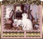 Добрый день! Котята открытки фото рисунки картинки поздравления