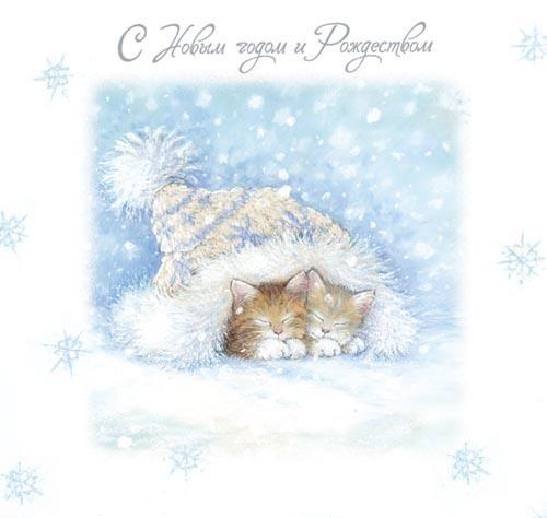С Новым годом и Рождеством! Котята спят под шапочкой
