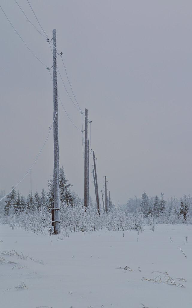 Снимок 13. Зима в Пермском крае. В районе смотровой площадки Белые камни зимой на деревьях, проводах бывает много инея. Создается совершенной потрясающий по красоте пейзаж.