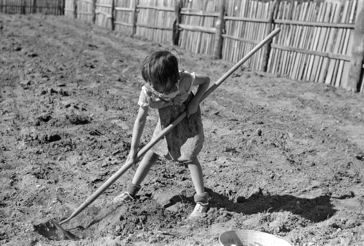 Джози Кодилл, помогающая полоть грядки, Пай сити, Нью-Мексико, 1940