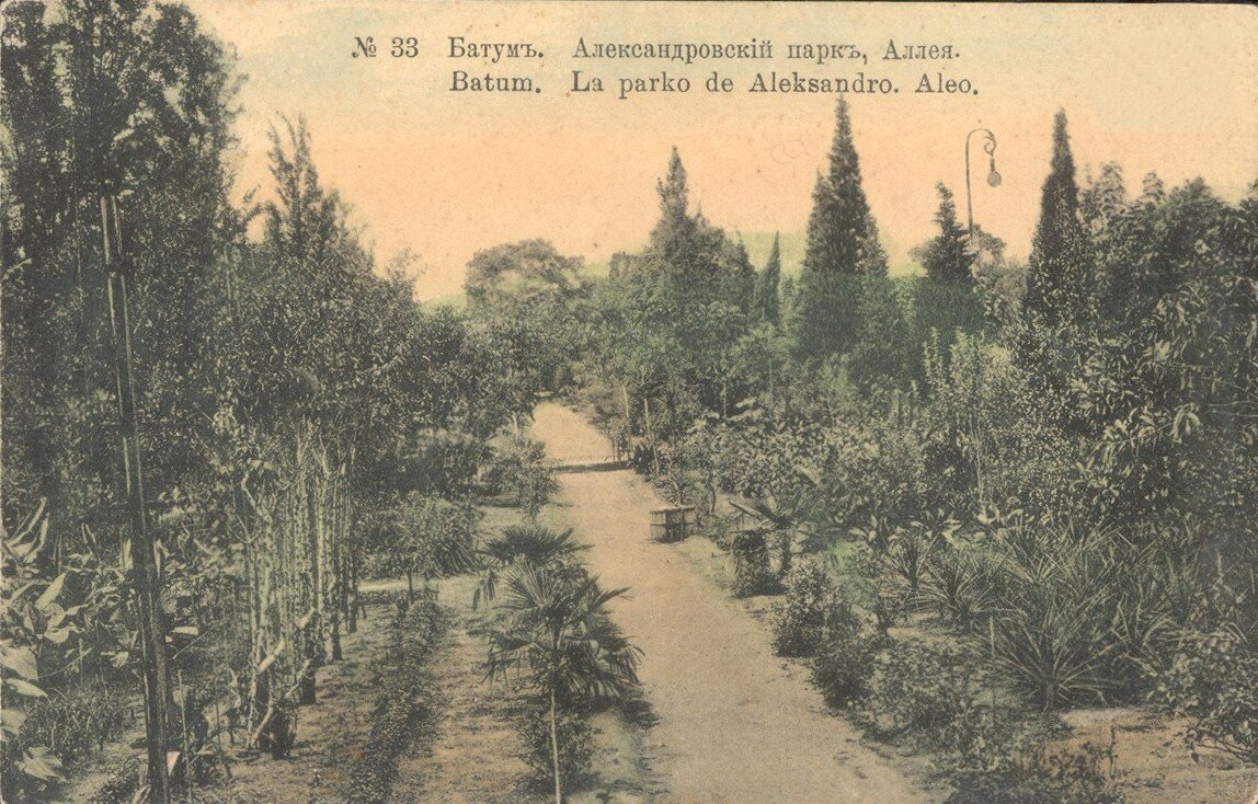Александровски парк. Аллея