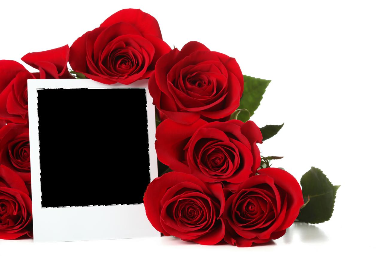рамка для фотографий с розами шести лет длились