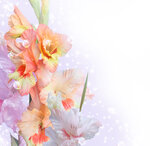 Spring Flowers #4 (1).jpg