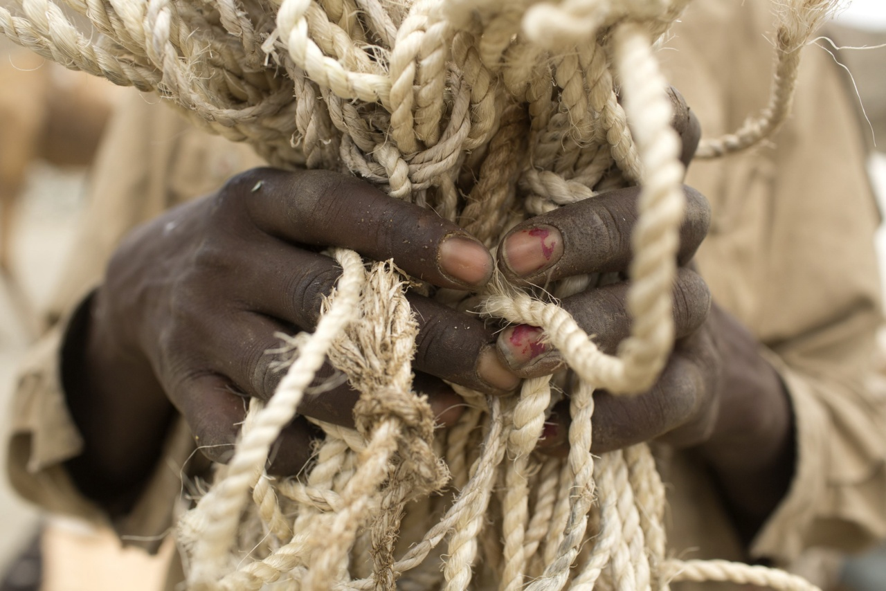 A camel herder and salt merchant holds rope in the Danakil Depression of northern Ethiopia