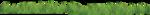 трава - поляна 1.png