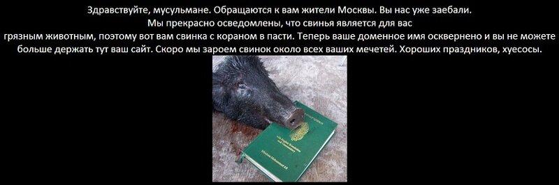 Свиные головы на мусульманских сайтах