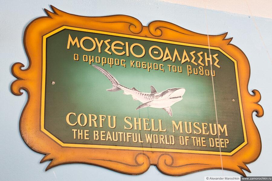 Музей ракушек Корфу   Corfu Shell Museum. The beautiful world of the deep