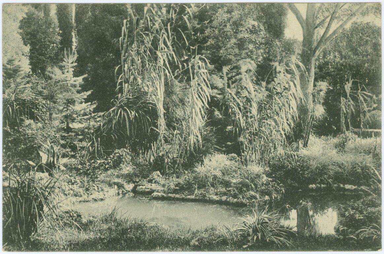 Императорский Никитский сад. Бассейн Черного моря