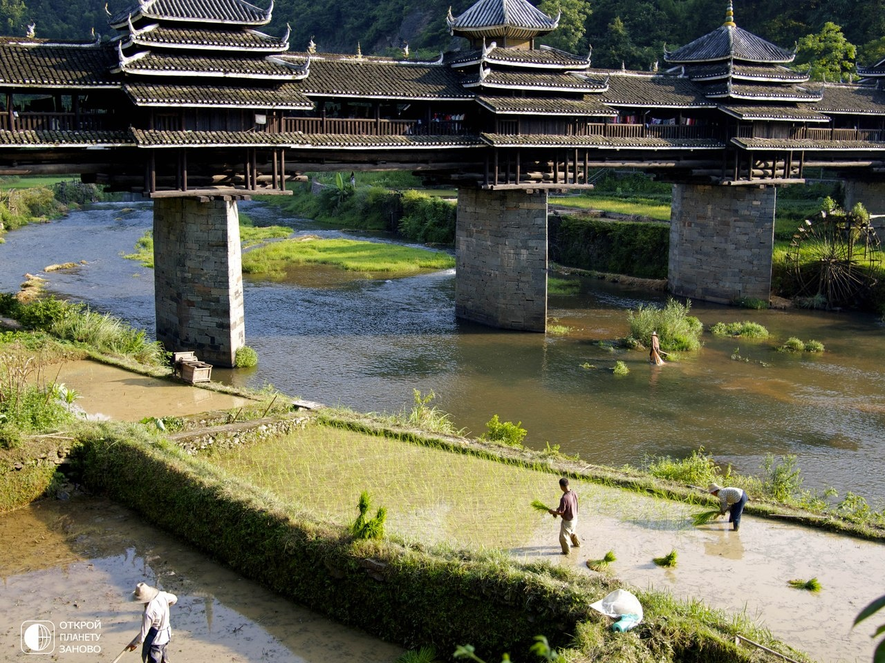 Мост или дорога в никуда а вот мост