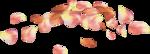 NLD Roses Petals.png