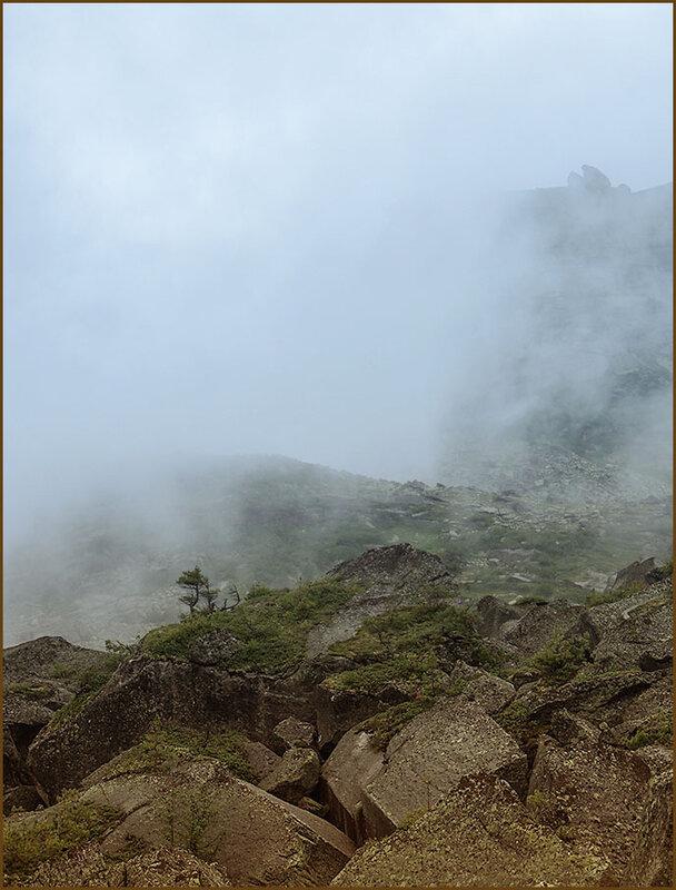 Всё в тумане