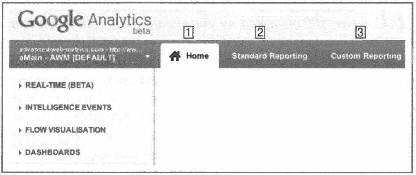 Рис. 5.1. Три области формирования отчетов Google Analytics с выбранной областью Ноmе