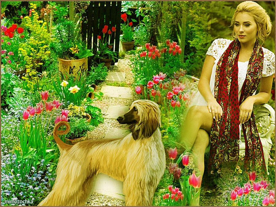 В саду ссобакой.jpg