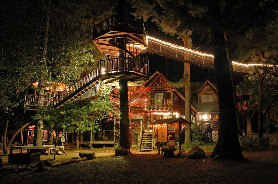 Самые красивые дома в лесу - Лучшие фотографии со всего света: http://trasyy.livejournal.com/1258749.html