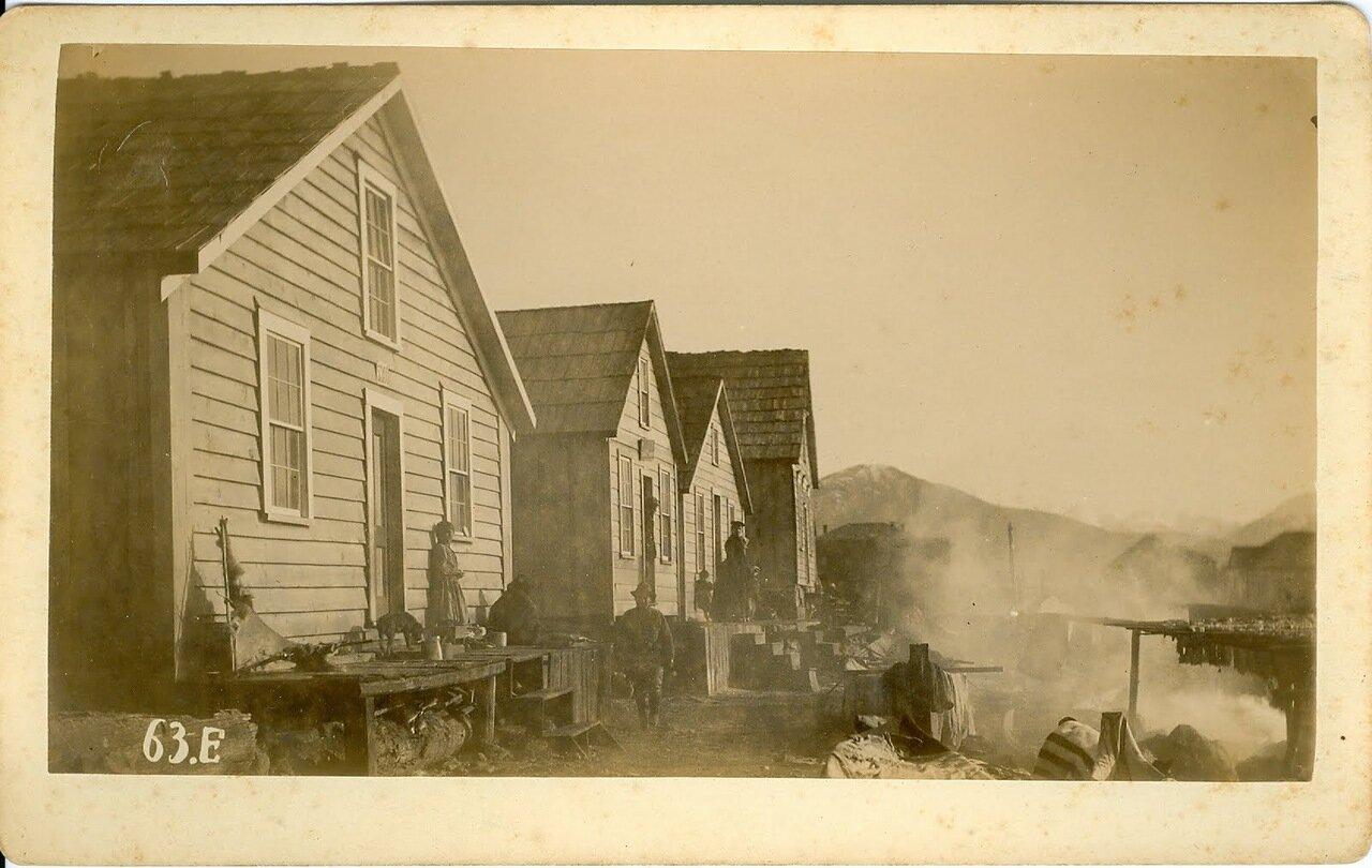 1880. Ситка