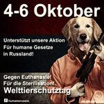 avatar german.jpg