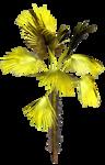 R11 - Palms - 2013 - 3 - 023.png