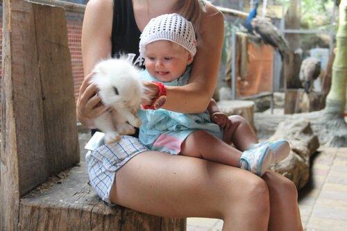 мини-зоопарк в курортном городке, 2013-05-31