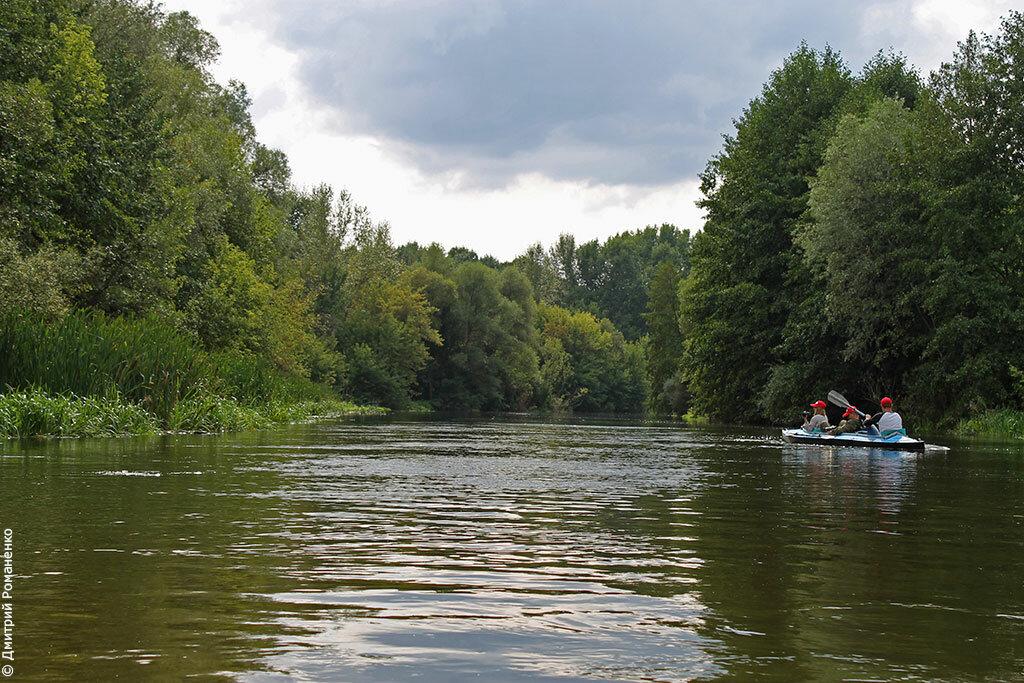 байдарки, белгородская область, волоконовский район, сплав, река оскол, дикая природа