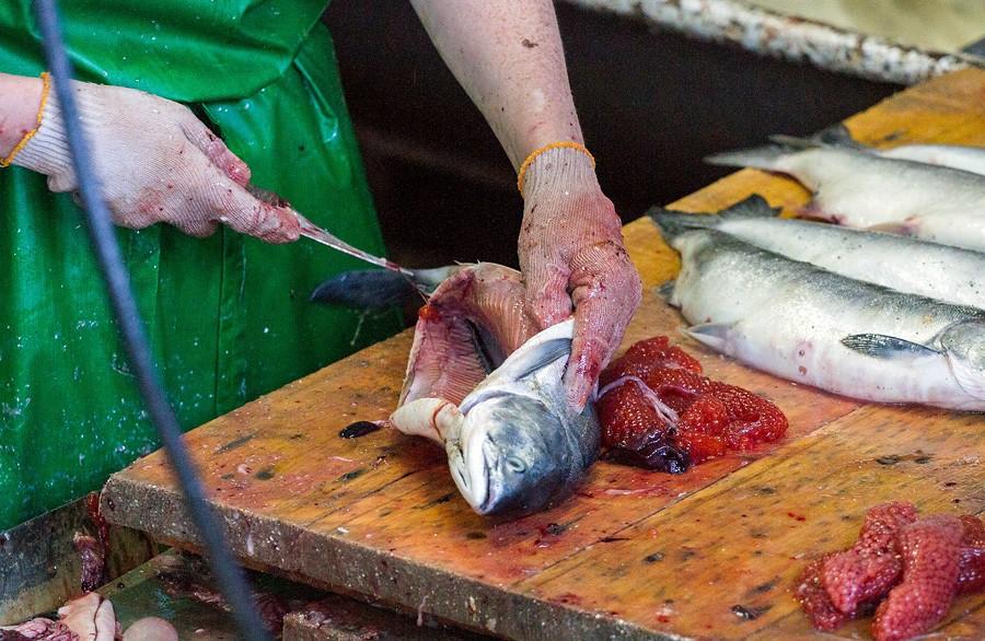 В иные дни рыбы на завод приходит так много, что её просто складывают на полу.