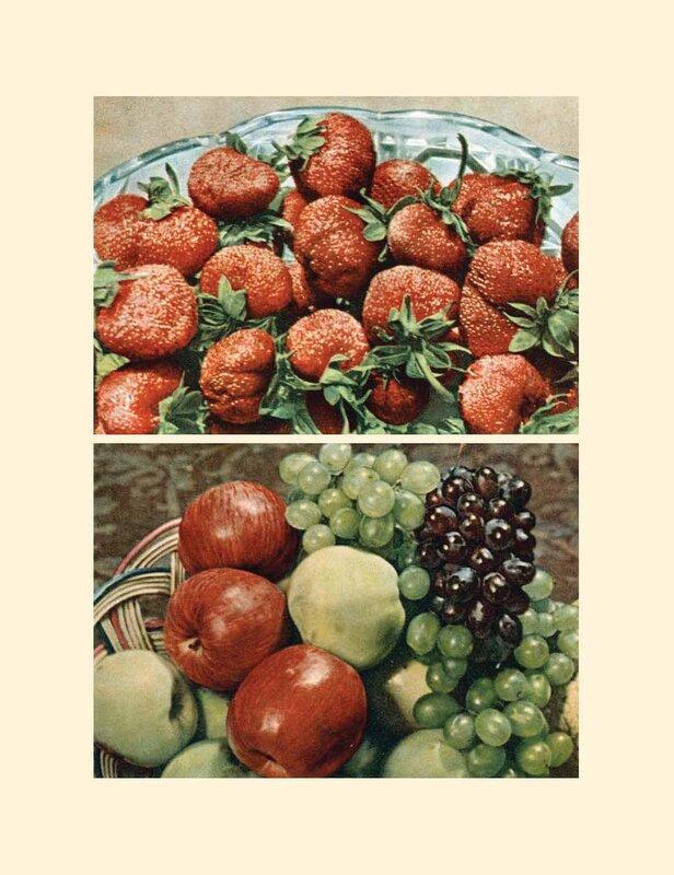 399. Книга о вкусной и здоровой пище 1952_Страница_399.jpg