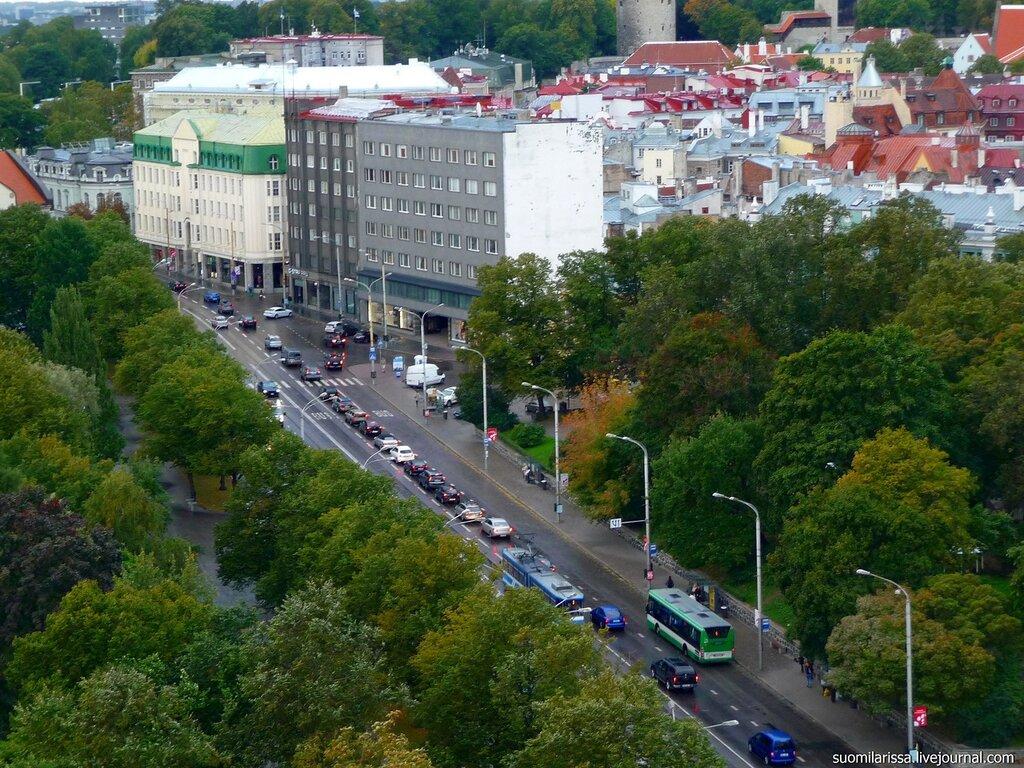 Пярнуское шоссе, книжный магазин.