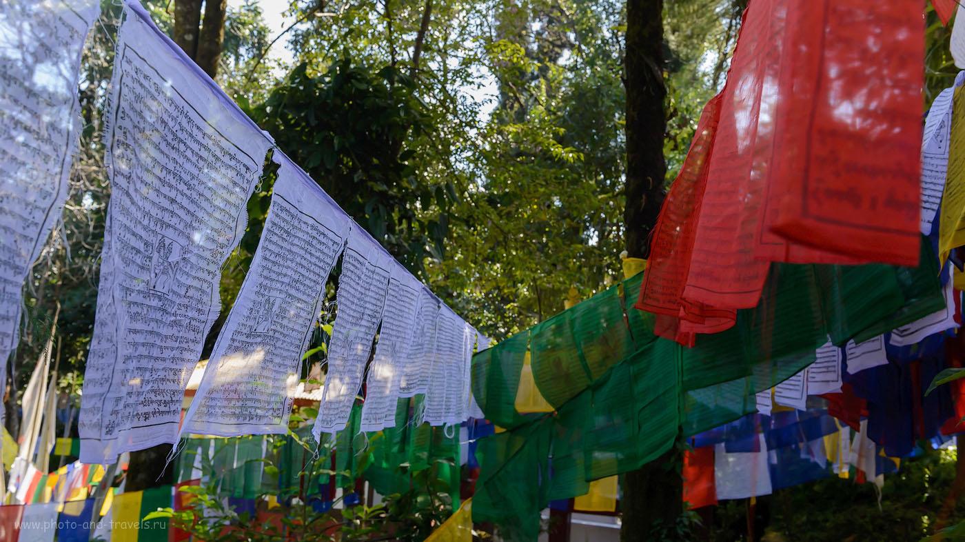 Фотография26. Мантры в тибетском храме. 9.0, 1/125, 1600, 34.