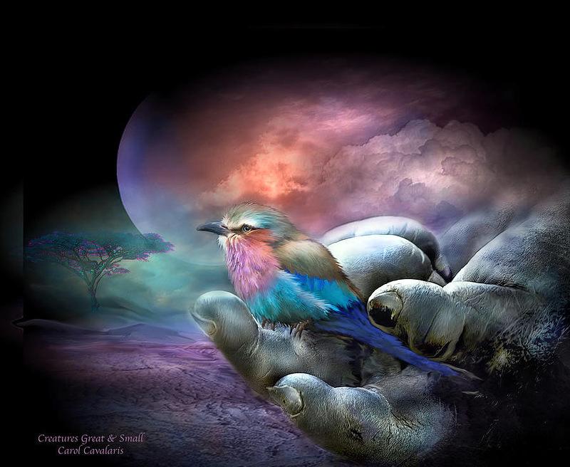Кэрол Каваларис. Птицы