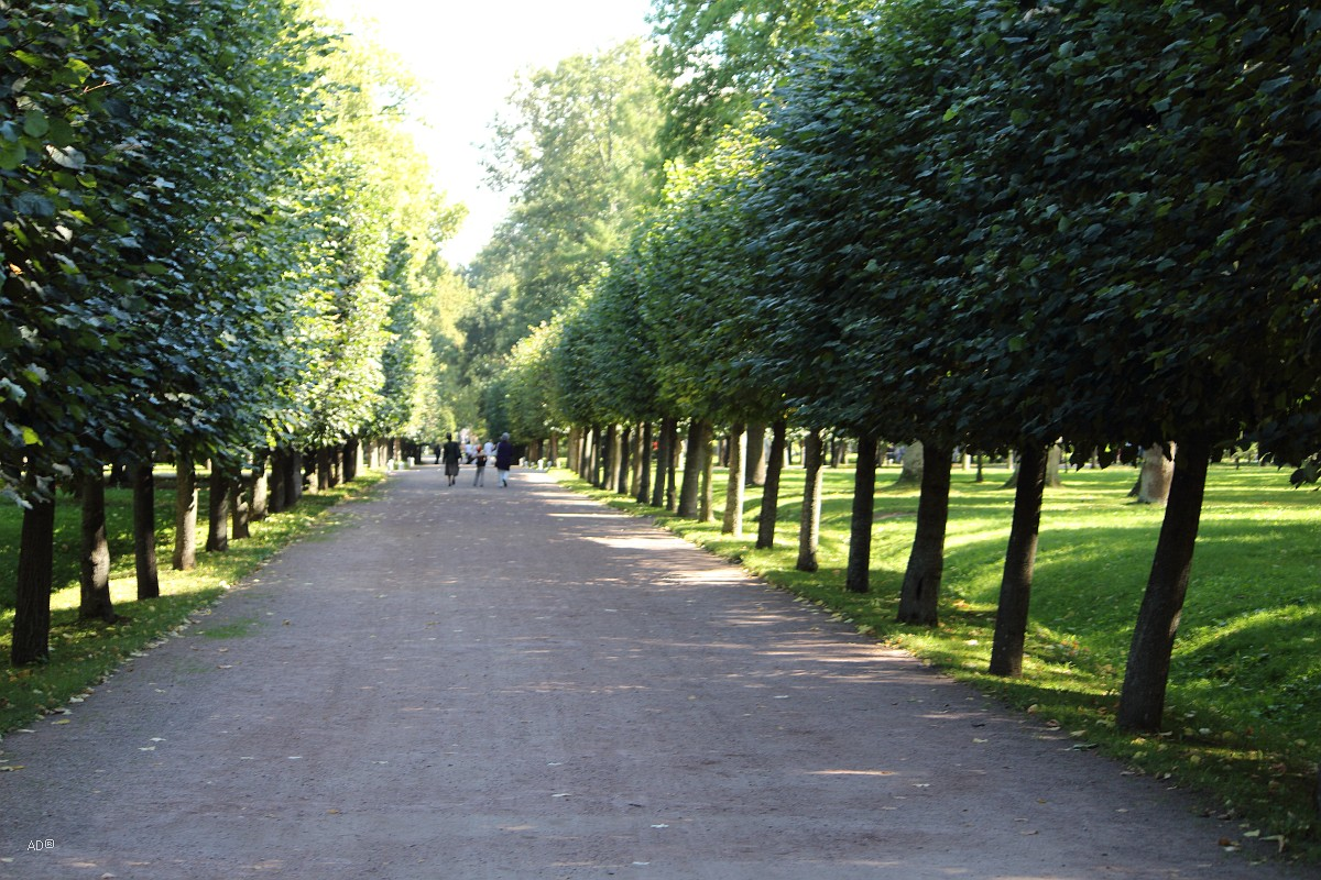 Петергоф - Западная часть