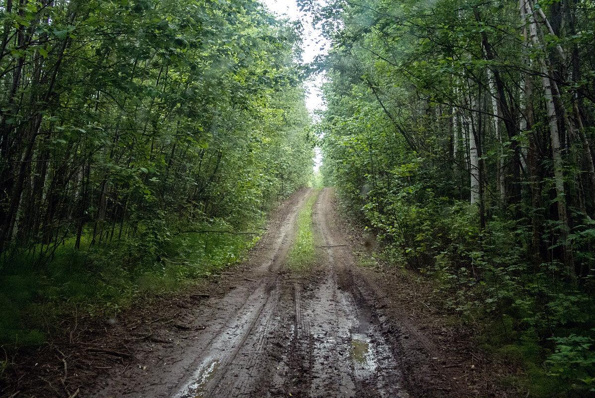 Дорога на Толбачик или Асхачный увал