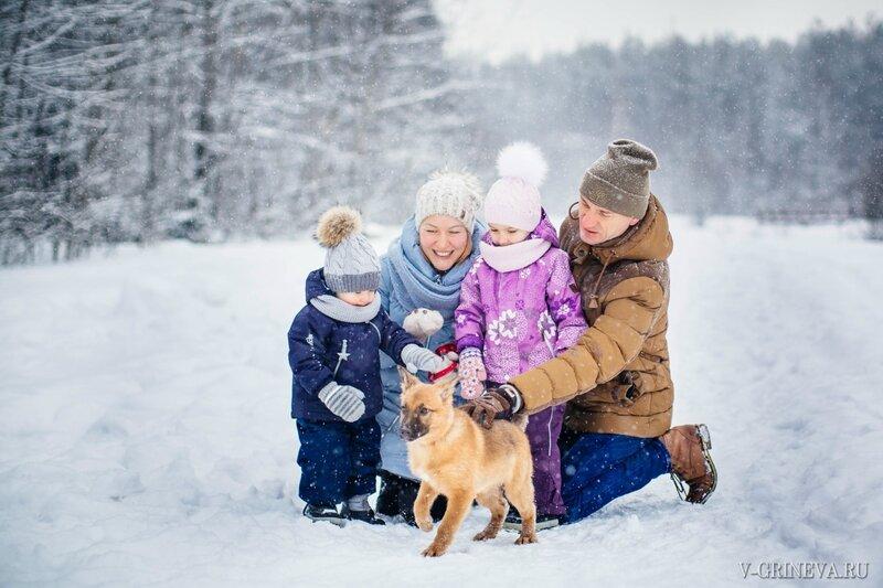 2017 01 Семейная съемка с собаками