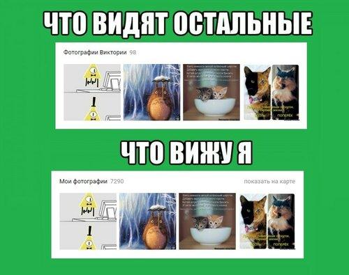 chto-vizhu-ya_18701457_big_.jpeg