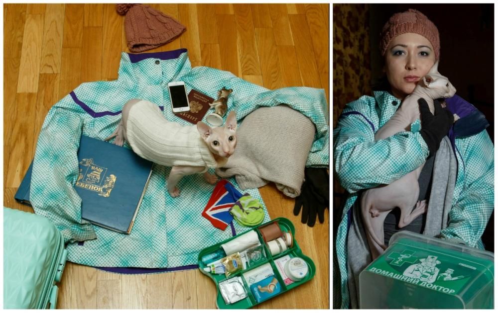 © Ekaterina Sahakyan  Кот, телефон, паспорт, фарфоровая статуэтка медведя (оберег, тотем), сме