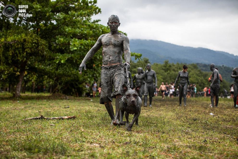 Четвероногий участник карнавала. (Victor MORIYAMA/AFP/Getty Images)
