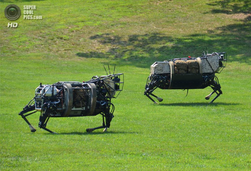 Четырёхногие роботы, разработанные по программе DARPA Legged Squad Support System (LS3). Они дол
