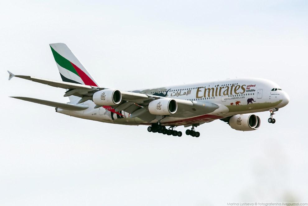 11. По последним данным, на сегодняшний день полет на самом большом в мире пассажирском самолёт