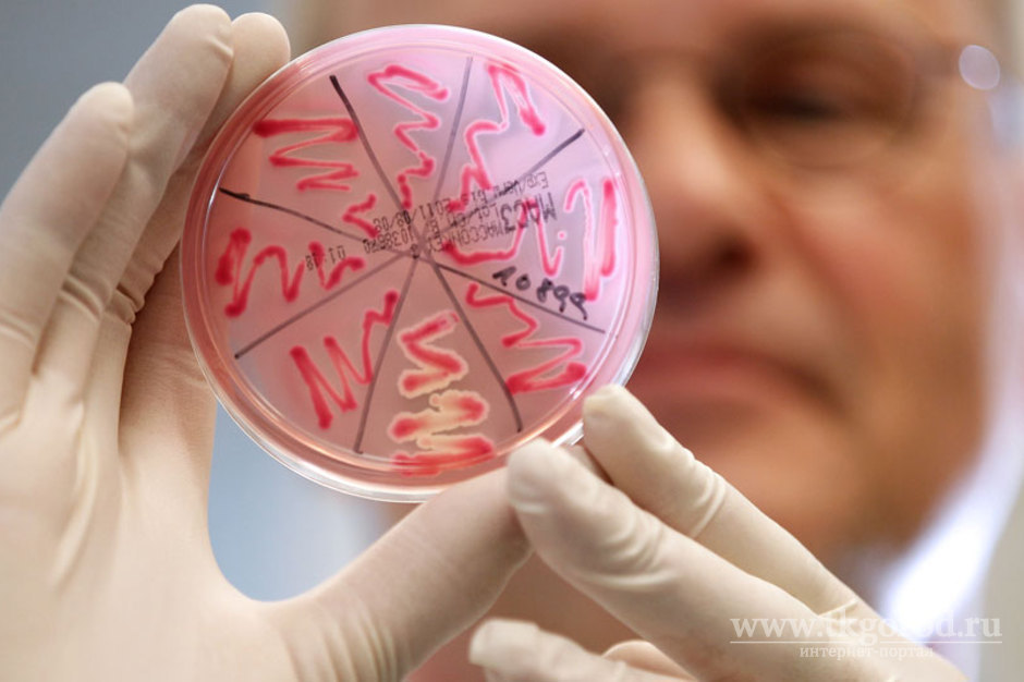 Роспотребнадзор назвал иностранных рабочих возможным источником гепатита, АвТулуне