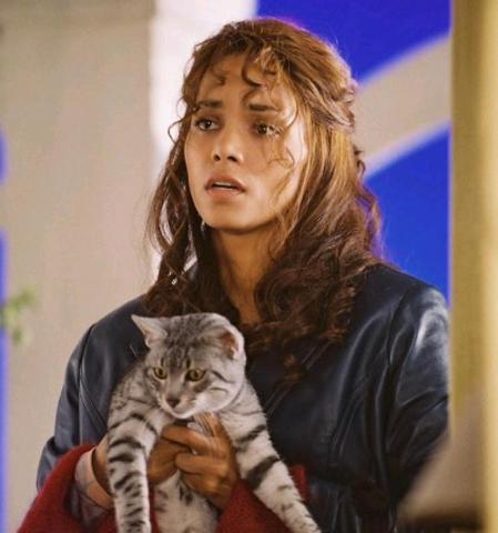 Мурлыканье кошек благотворно влияет наздоровье людей— ученые