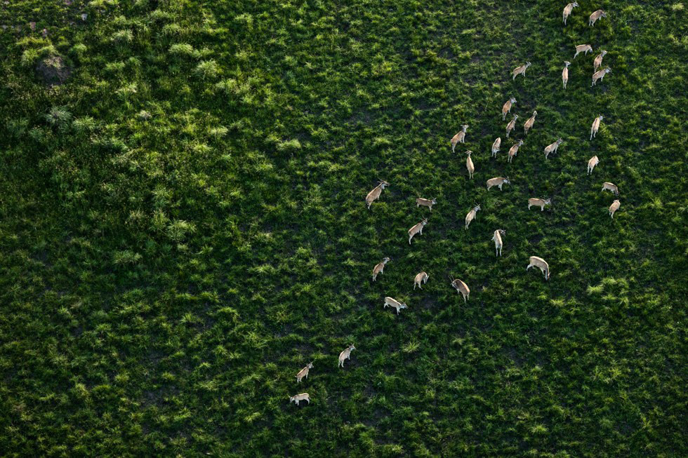 Abstract Aerial Photographs of Southern Africa by Zack Seckler